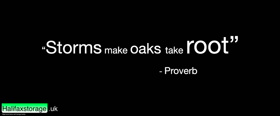 This image shows a proverb as a part of Halifax Storags UK's monday motivation series